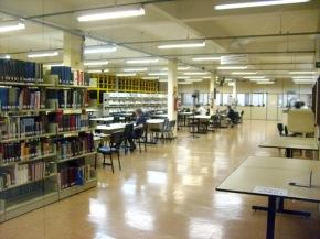 Mais sobre ser bibliotecário (público & universitário, especificamente)