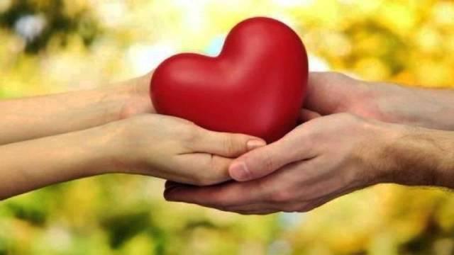Duas mãos segurando um coração - ajuda humanitária